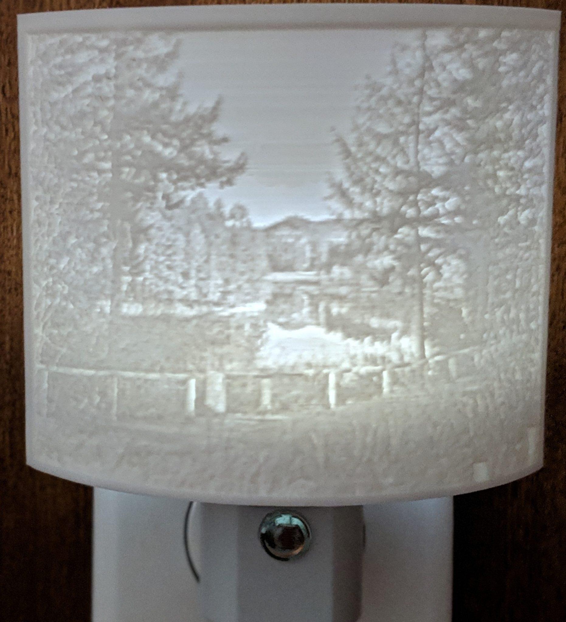 Custom 3D Printed Children's Night Light